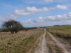 A road, Salisbury Plains